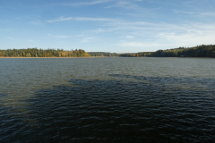 Osika, jeden z nejkrásnějších rybníků České Kanady