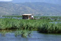 Vysychající a zarůstající jezero Dorjan